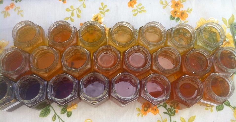 Honey_Terroir